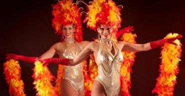 Top 4 dinnershows in Zuid-Holland